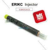 Erikc Ejbr05301d Delphi geläufige Schienen-Düsen-vollständiger Einspritzdüse Rjb R05301d Delphi Rjbr0 5301d Inyector Kraftstoff für Yuchai