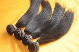Extensions brésiliennes de cheveu de Vierge non transformée en gros de bonne qualité