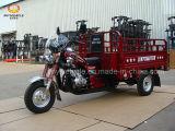 3つの車輪の貨物三輪車のオートバイ