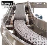 Hairise Leitblech-Paddel-Schutz-modulares Riemen-Oberseite-Kettenförderanlagen-System