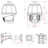 Compatibilidad multi vendedora caliente 4 en 1 cámara analogica del CCTV PTZ del zoom óptico bonito 20X