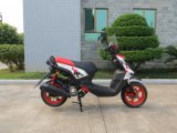 50cc CEE Scooter Motor (SL50T-A2)