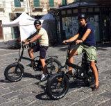 """48V 500W 20 """" 접히는 뚱뚱한 타이어 바닷가 눈 전기 자전거"""