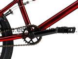 20 인치 BMX 자유형 자전거 /BMX 자전거 Sy-Fs2036