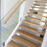 Escadaria reta de madeira do projeto moderno com a balaustrada do vidro Tempered