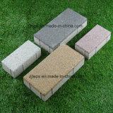 De água/porosos e permeáveis tijolo de pavimentação de caminho/forma do pé