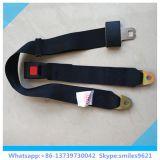 Cinturón de seguridad simple de 2 puntas para el asiento trasero