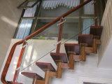 Подгонянная лестница колонки Tempered стекла цветов алюминиевая