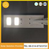 80W LED de energía solar todo en uno de los órganos de las luces de calle Solar