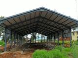 Schwein-Bauernhof-Stahlkonstruktion-Haus