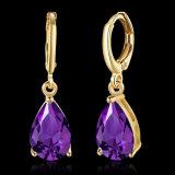 Oorringen van de Juwelen van de Hoepel Zircon van de Vrouwen van de manier de Eenvoudige Purpere