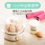 계란 증기 계란 보일러 계란 요리 기구