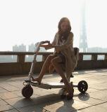 Três rodas ao ar livre do lazer 2017 que dobra o veículo elétrico da mobilidade