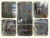Edelstahl 500lph Electrodeionization EDI Ultrapure Wasser-System