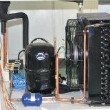 Камера климатического испытания влажности температуры относящая к окружающей среде