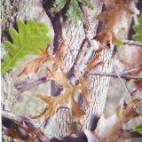 Camo Tree L'acqua PVA filma il foglio reale di B077kmc59b Hydrographics