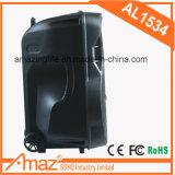 De luz RGB de 15 pulgadas Bluetooth Temeisheng Altavoz exterior