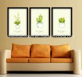 Imagen de la planta para la decoración del colgante de pared