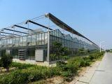 야채를 위한 고품질 그리고 호의를 베푸는 가격을%s 가진 PC/Glass/Film 온실