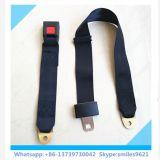 Hot-Selling 2 puntos fabricante de cinturones de seguridad