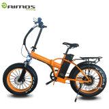 AMS Tdn 02 새로운 기어 모터 48V 1000W 전기 자전거 지방질 타이어