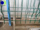 Treillis métallique enduit de poudre clôturant la qualité moins de coût