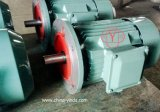 Чугунный Корпус - Улучшенный КПД Класса IE2 Электрический Двигатель