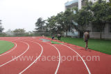 Относящая к окружающей среде поверхность спорта следов EPDM идущая