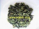 Tè di Oolong