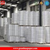 Pâte mélangée Jumbo Roll Thermal Paper