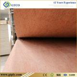 piel de la puerta de la madera contrachapada de 915X2135X2.5m m