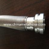 Connexions sifflantes flexibles d'acier inoxydable de bonne qualité