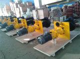 Pompe centrifughe estraenti 100RV - pompa verticale dei residui dello SP