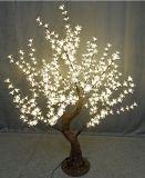 يصمد [ي] 18 [س/روهس] [إيب65] [لد] [شرّي تر] & [لد] شجرة أضواء مع 2 سنون كفالة