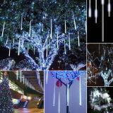 خارجيّة داخليّة [فولّ كلور] [لد] نير ضوء لأنّ عيد ميلاد المسيح زخرفة