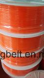 Surface douce et approximative d'unité centrale de courroie de polyuréthane de courroie ronde transparente orange verte d'entraînement