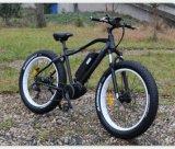 8 재미 중앙 모터를 가진 세륨 전기 자전거