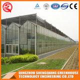 Casa verde de vidro de Venlo do material de construção comercial