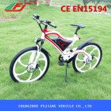 [فج] حارّ عمليّة بيع نموذج [إكتريك] درّاجة مع قوة محرك