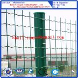 Euro Omheining/de Omheining van het Landbouwbedrijf Fence/PVC