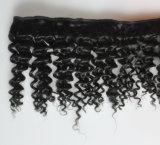 10Aねじれた巻き毛の人間の毛髪の拡張自然なブラジルのRemyのバージンの毛Lbh 005