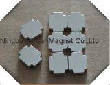 De Permanente Magneet van uitstekende kwaliteit van het Neodymium met Speciale Vorm