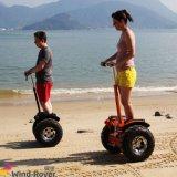 電気スクーターのバランスをとっている道の電気自動車の自己を離れた2つの車輪の電気バイク