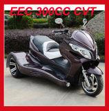 Nuovo triciclo adulto 200cc da vendere (MC-393)