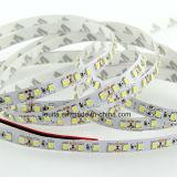 Striscia calda di bianco SMD3528 120LEDs/M LED