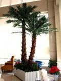 워싱톤 호텔 쇼핑 센터 쇼핑 센터 훈장을%s 인공적인 야자수