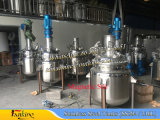 500L roestvrij staal dat Tank mengt met Magnetische Mixer