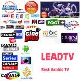 IPTV canal de TV Cable Smart 400PCS Canal de 1 años, incluyendo francés, árabe, africana y los canales de Túnez