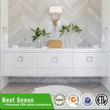 Module de salle de bains moderne avec le miroir