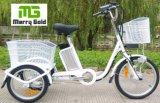 Un triciclo eléctrico más viejo de la rueda 250W del cargo tres del jinete